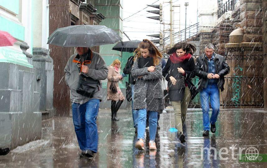 МЧС предупреждает о ливнях и ветре с порывами до 20 м/с в Москве. Фото Василий Кузьмичёнок
