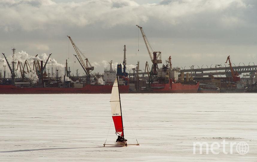 В Петербурге соберутся крупнейшие специалисты по урбанистике. Фото Предоставлено организаторами