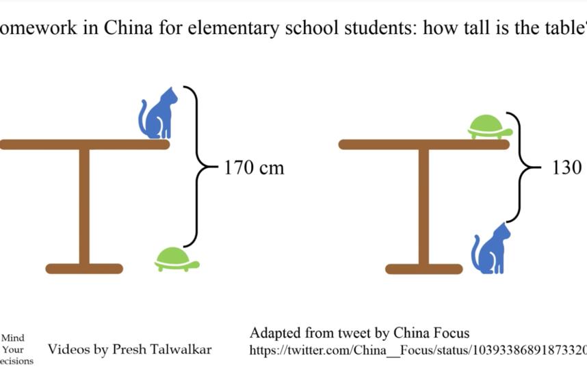 Китайская задача для учеников начальной школы. Фото Скриншот Youtube