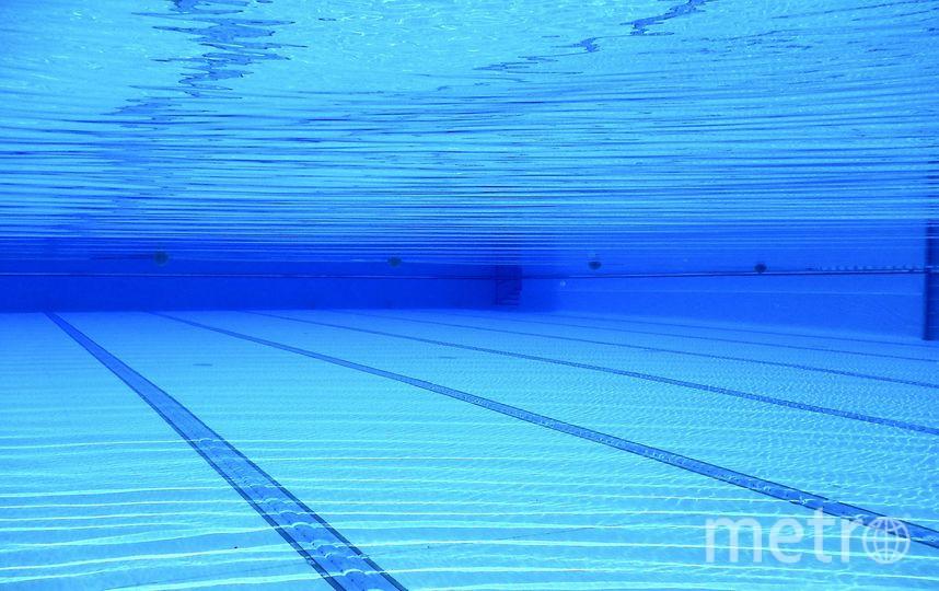 В ближайшие три года в Москве построят более 20 бассейнов. Фото pixabay