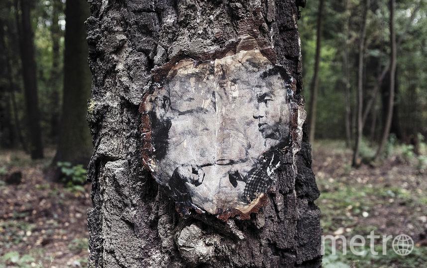 В Переделкино деревья теперь украшают портреты поэтов. Фото Предоставлено организаторами