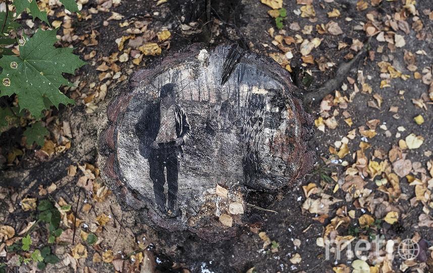 В Переделкино деревья теперь украшают портреты поэтов. На дереве: Роберт Рождественский. Фото Предоставлено организаторами