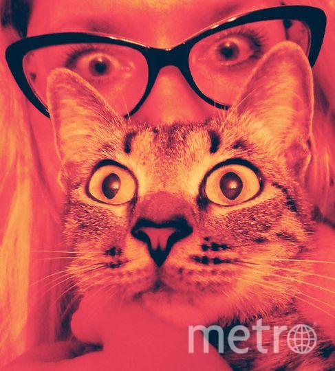 Меня зовут Наталья и моя кошка баловница Миранда! Фото Наталья Балукова