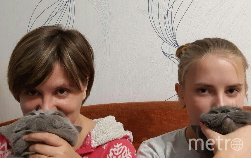 Меня зовут Евгения и моя дочь Снежана. Наши кошки Эйва и Глаша. Они обе британки. Фото Евгения