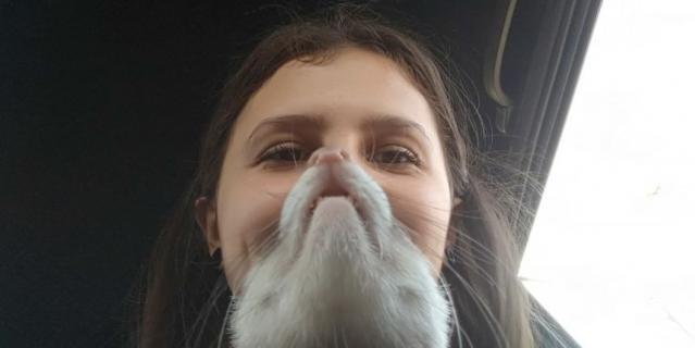 У меня есть борода из хорька! Хорёчка зовут Плюшка. Очень ласковая и энергичная девочка, мы с ней очень любим друг друга!