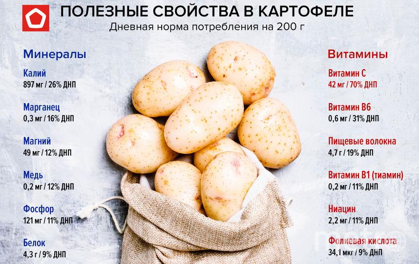 Картофель богат полезными веществами. Фото Роскачество