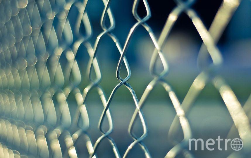 Массовая драка произошла в колонии в Омске. Фото pixabay.com