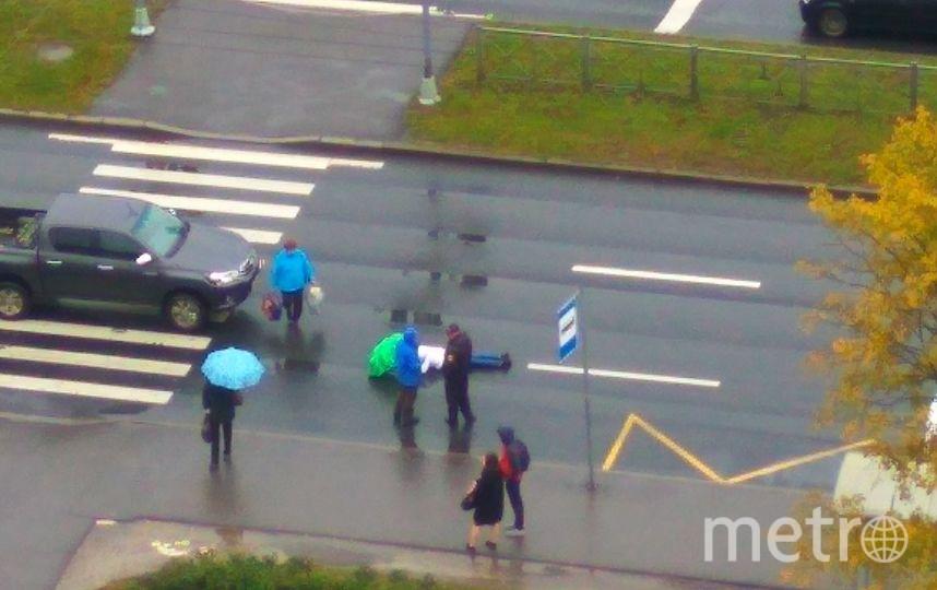 На перекрёстке Доблести и Ричарда Зорге сбили пешехода на переходе. Фото ДТП и ЧП | Санкт-Петербург | vk.com/spb_today., vk.com