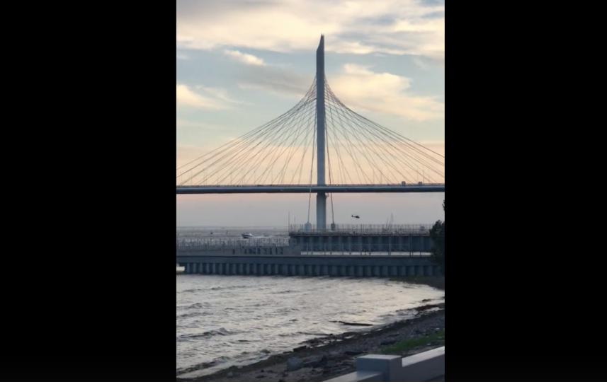 Скриншот видео. Фото ДТП и ЧП | Санкт-Петербург | vk.com/spb_today., vk.com