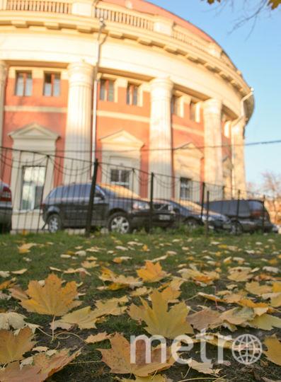 В Москву вернулось бабье лето: Воздух прогреется до 15 градусов. Фото Василий Кузьмичёнок