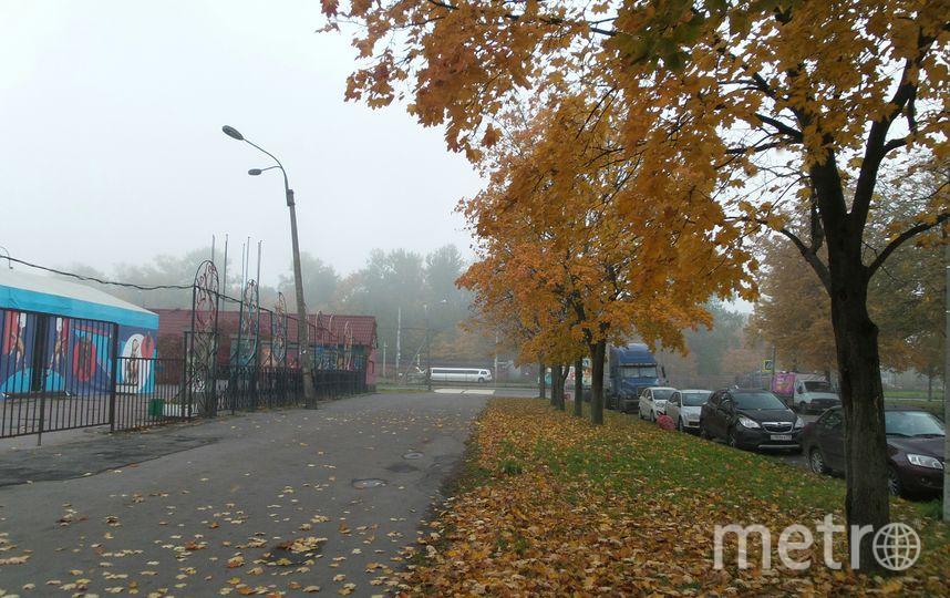 """Туман в Автово. Фото """"Metro"""""""