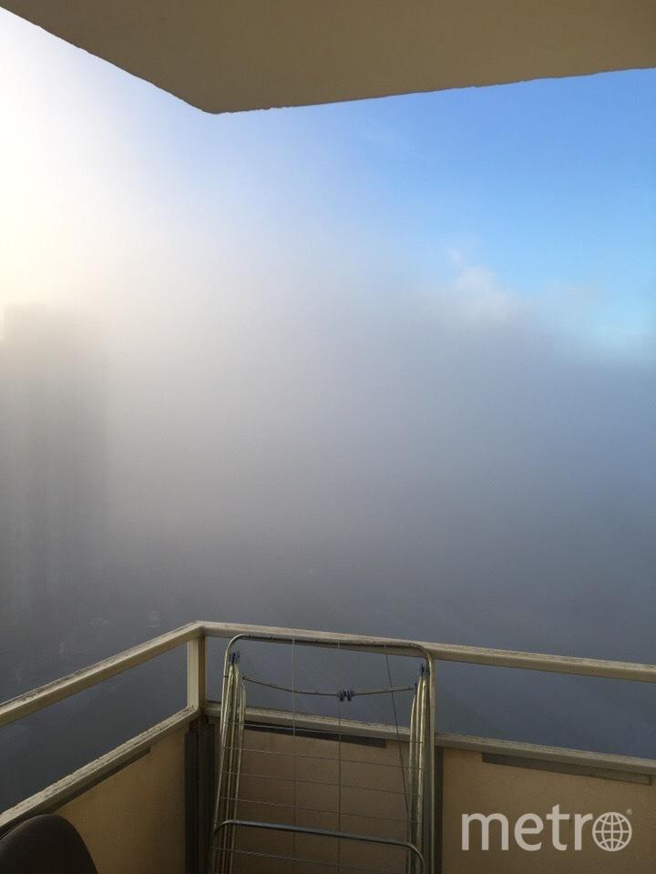 Туман в Петербурге 11 октября. Фото Сергей Панасенко | vk.com/spb_today., vk.com