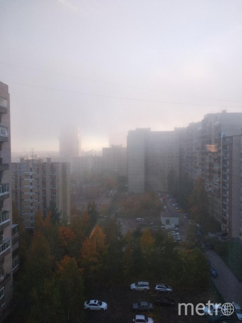 Туман в Петербурге 11 октября. Фото Максим Сергеев | vk.com/spb_today., vk.com