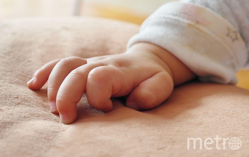 В Петербурге родилась тройня. Фото pixabay.com