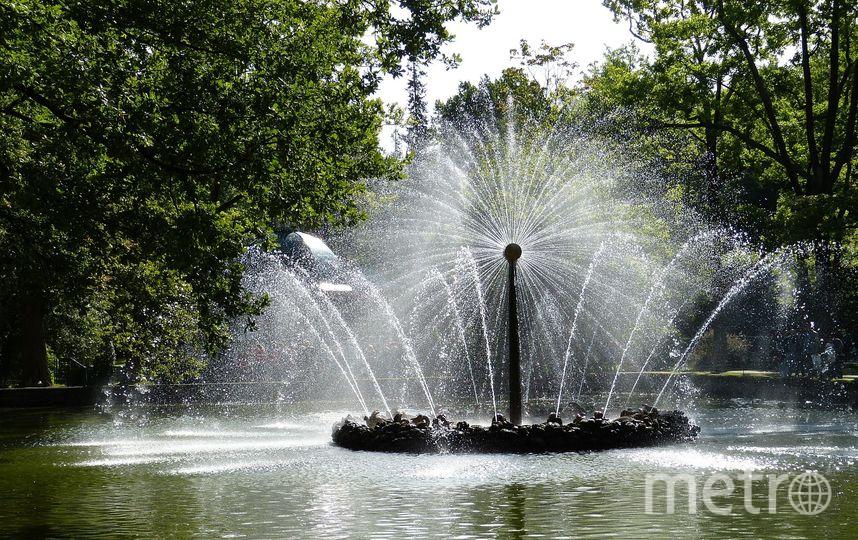 В Петербурге закрылся сезон фонтанов. Фото Pixabay.com
