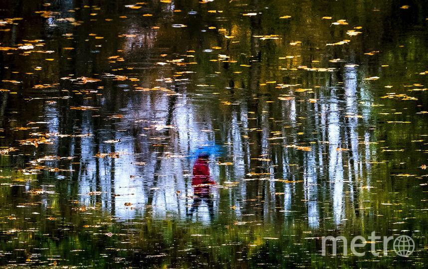 """""""Золотая"""" осень продолжит радовать москвичей. Фото AFP"""