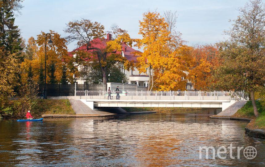 """14-15 октября в Санкт-Петербурге. Фото """"Metro"""""""