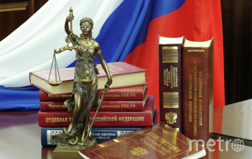 Инициатива предполагает внесение поправок в Уголовный кодекс. Фото РИА Новости