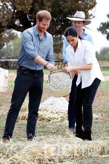 Принц Гарри и Меган Маркл в Австралии на ферме. Фото Getty