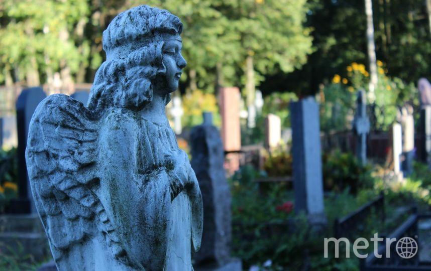 """Петербургским подросткам запретили гулять по кладбищу ночью. Фото Дарья Есенина., """"Metro"""""""