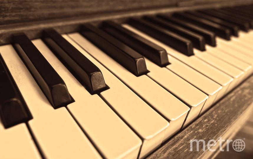 Канадского пианиста случайно похоронила не его семья. Фото pixabay.com