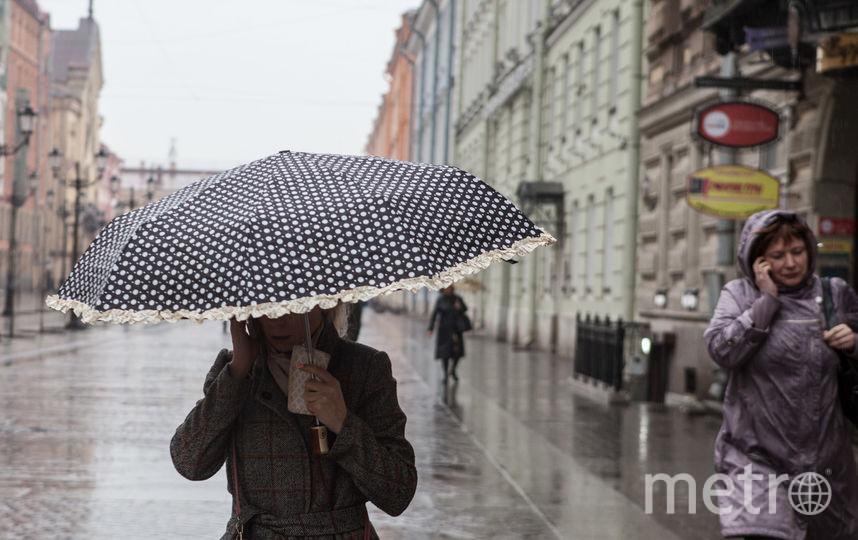 """Петербуржцев ждут последние умеренно-теплые выходные. Фото """"Metro"""""""