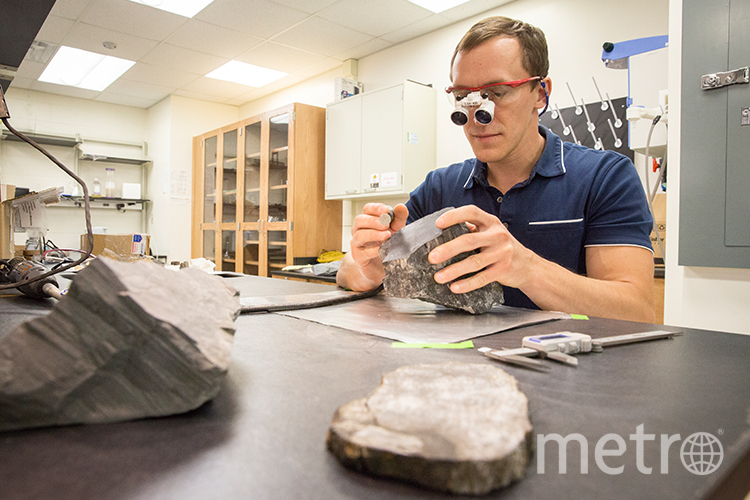 Эрик Гульбрансон изучает найденные в Антарктиде окаменелости. Фото UWM Photo/ Troye Fox