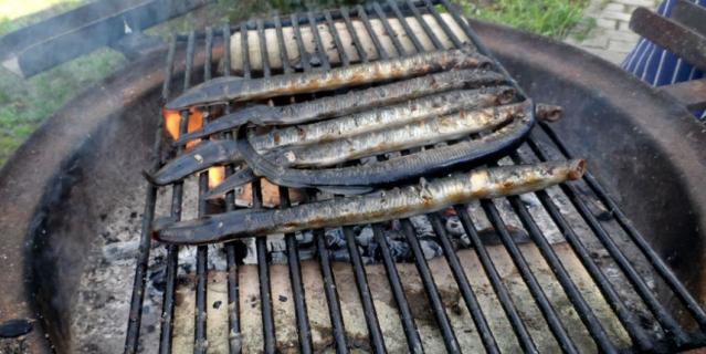 Шеф-повар ресторана Franzia Идрек Коверик умеет готовить 10 блюд из миноги.
