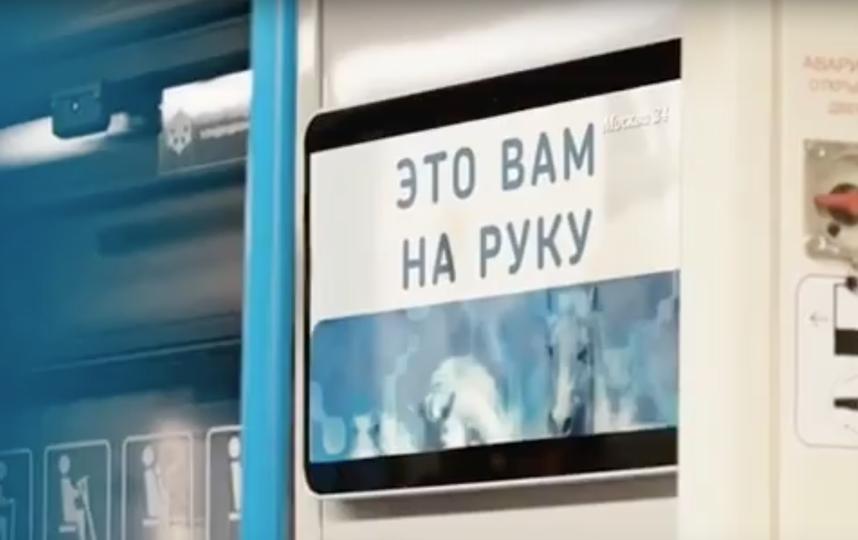 Метрополитен повторил акцию Бэнкси. Фото Скриншот, Скриншот Youtube