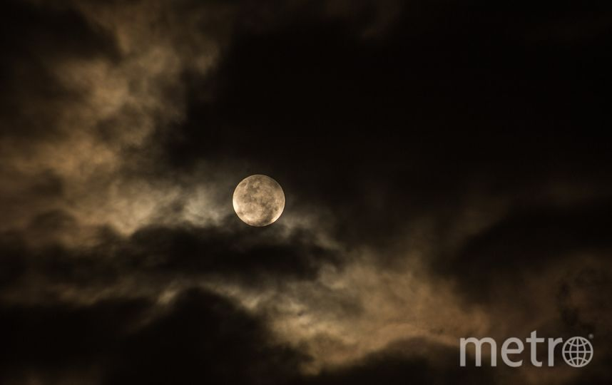 """Москвичи смогут увидеть """"жизнерадостную"""" Луну. Фото pixabay"""