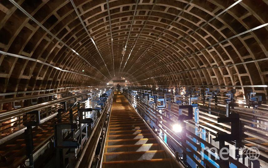 Так выглядел в октябре 2018-го года один из наклонных ходов станции «Проспект Славы» – проводится монтаж эскалаторов тяжёлого хода. Фото Метрострой