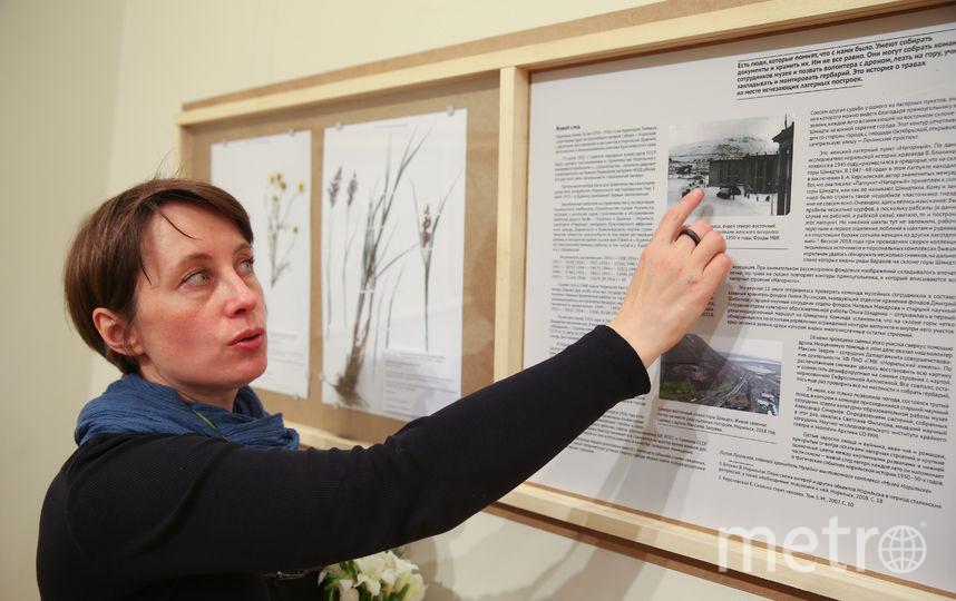 Цветы и травы в Москве расскажут о тайнах истории. Фото Василий Кузьмичёнок