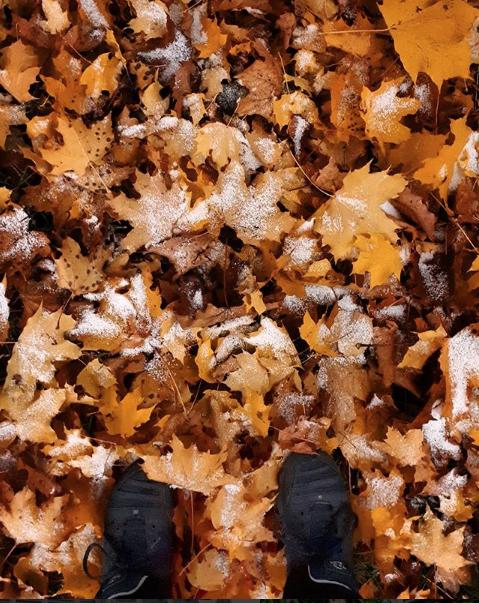Первый снег выпал в Мытищах. Фото Скриншот instagram.com/mitten.v/