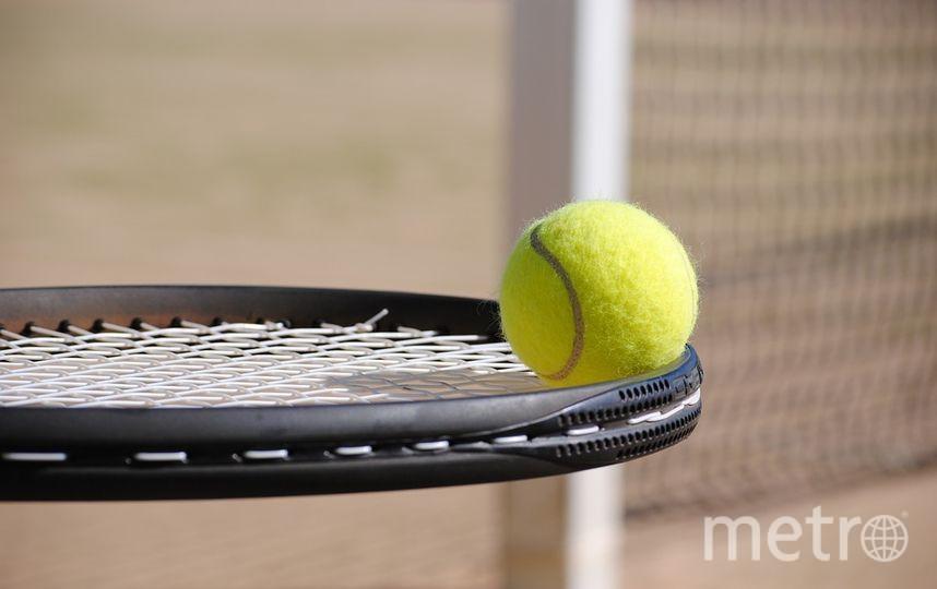 ВТБ выступил титульным спонсором турнира. Фото https://pixabay.com