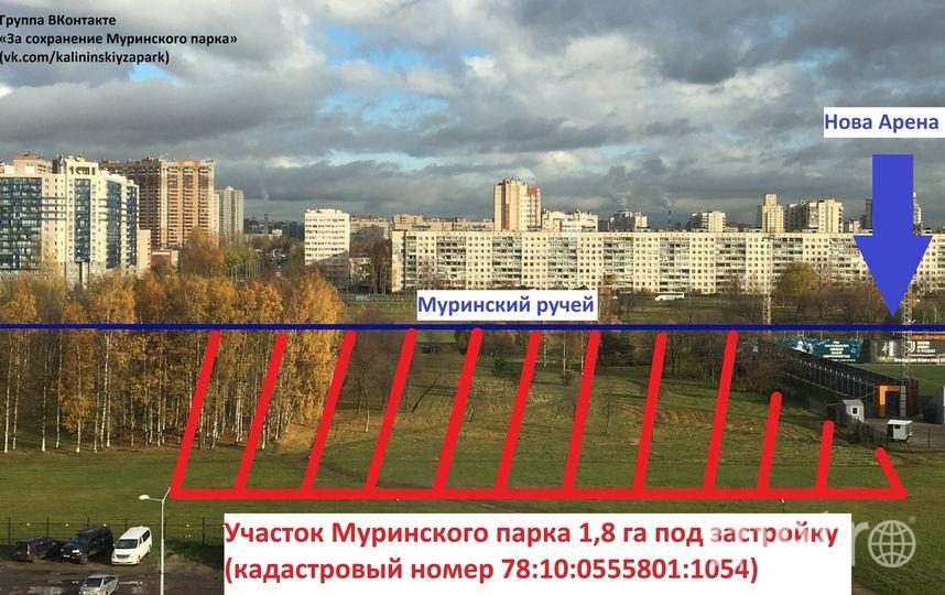 Фото: vk.com/kalininskiyzapark. Фото vk.com