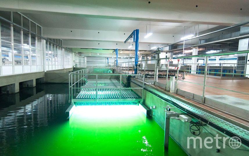По словам мэра, вода в Москве не уступает уровню воды в Лондоне и Сиднее. Фото Twitter @MosSobyanin.