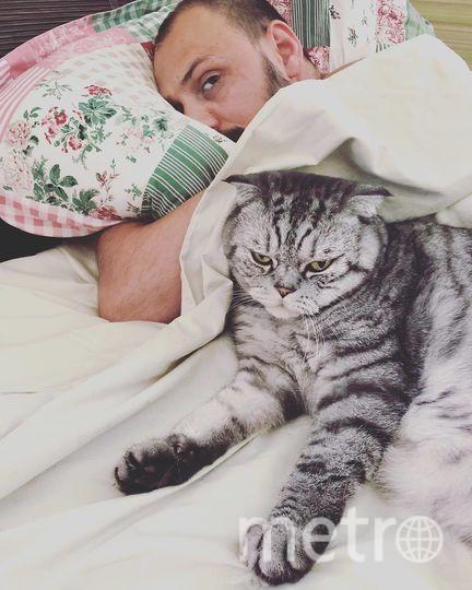 Кот Ники. Фото Скриншот Instagram/famousniki