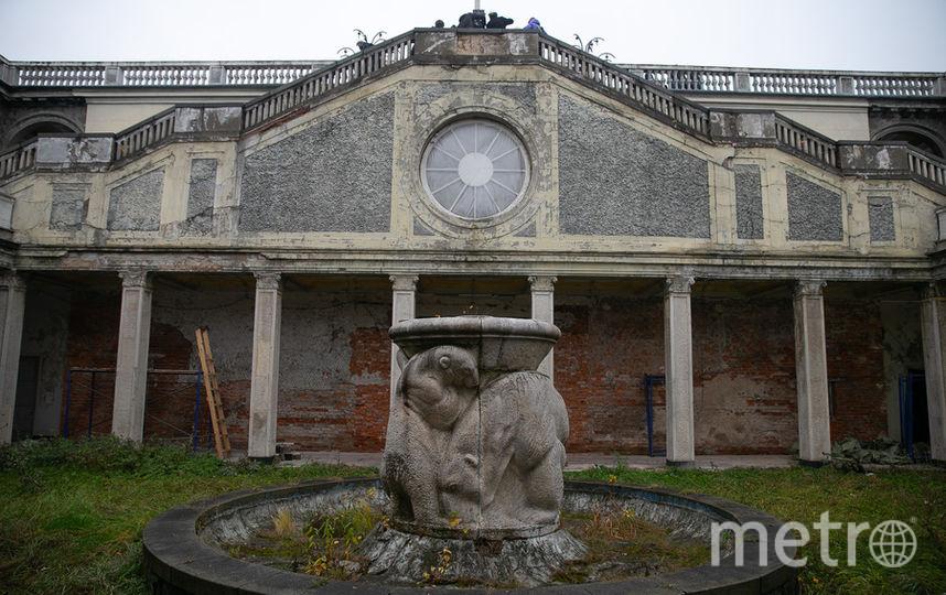 Вокзал окружают сады с фонтанами – северный украшен белыми медведями и скульптурами птиц, которые уже увезли. Фото Василий Кузьмичёнок