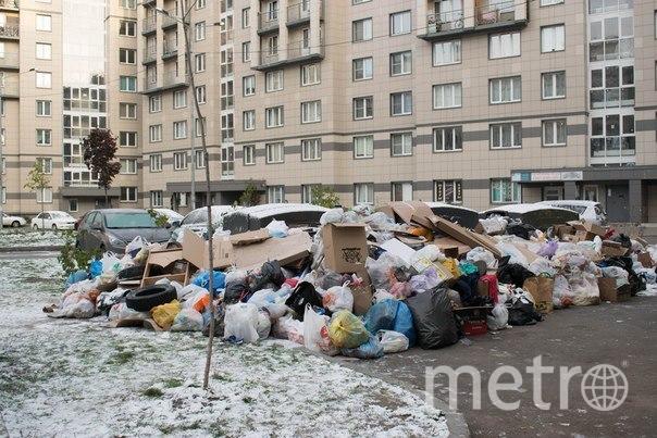 Жители Славянки переживают мусорный коллапс. Фото предоставлено активистами
