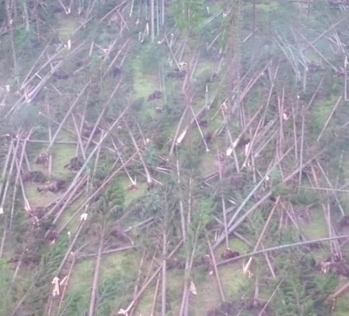 Сицилию затопило в результате ливней: есть жертвы. Фото скриншот видео www.instagram.com/veneziacityitaly/