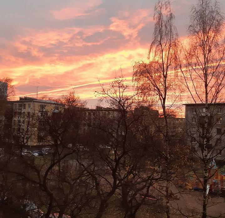 """Опять кроваво-красное небо: петербуржцы """"поймали"""" красивый закат. Фото скриншот www.instagram.com/anna_doinyak/"""