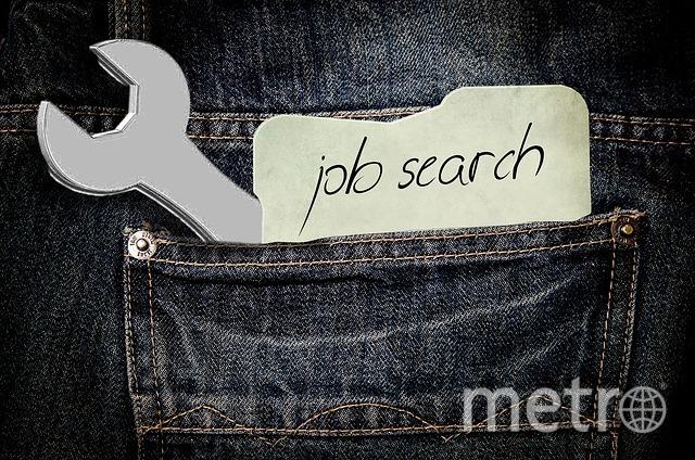 Поиск работы. Фото pixabay.com