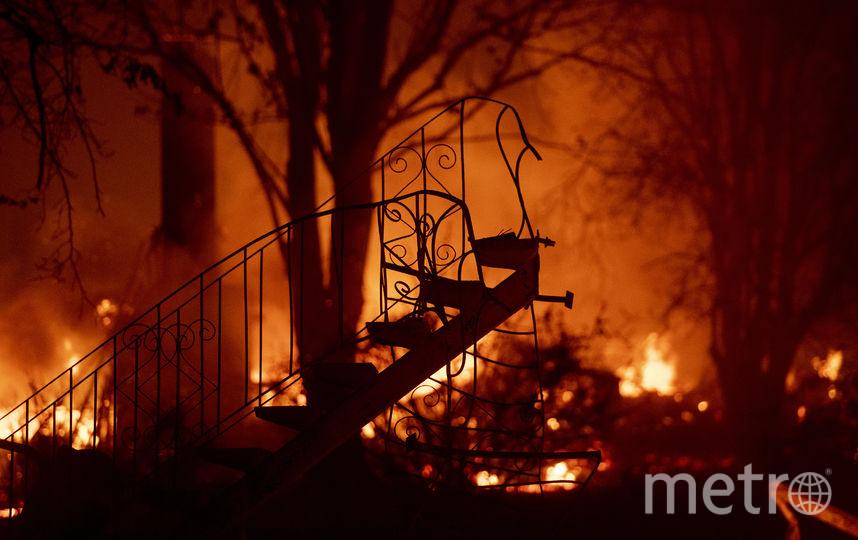 Пожар уничтожил город Парадайс на севере Калифорнии. Фото AFP
