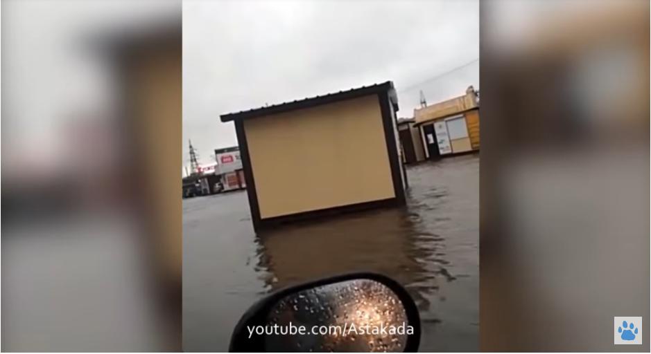 Скрин-шот видео плавающего ларька. Фото Скриншот Youtube