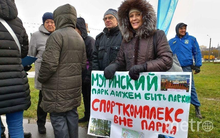 Активисты передали в Смольный 65 листов с подписями в защиту Муринского парка. Фото предоставлено активистами