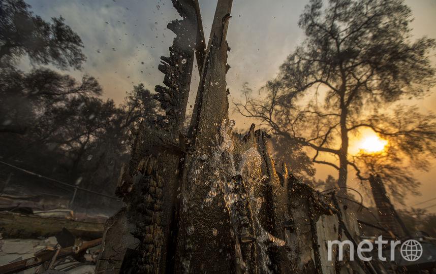 Пожар в Пэрэдайс стал самым разрушительным в истории Калифорнии. Фото Getty