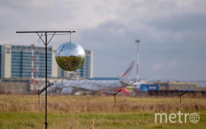 """Серебристый шар отпугивает мелких птиц. Фото Алена Бобрович, """"Metro"""""""