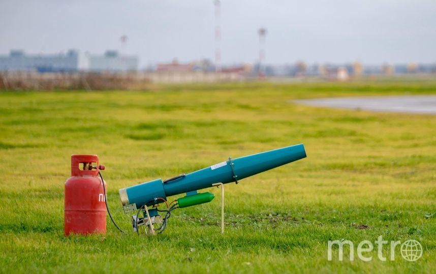 """Газовая пушка работает в автоматическом режиме. Фото Алена Бобрович, """"Metro"""""""