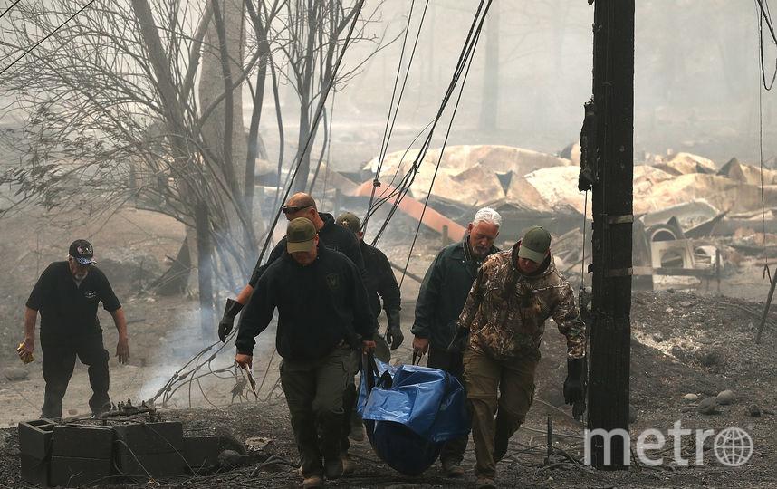 Лесные пожары в Калифорнии. Фото AFP