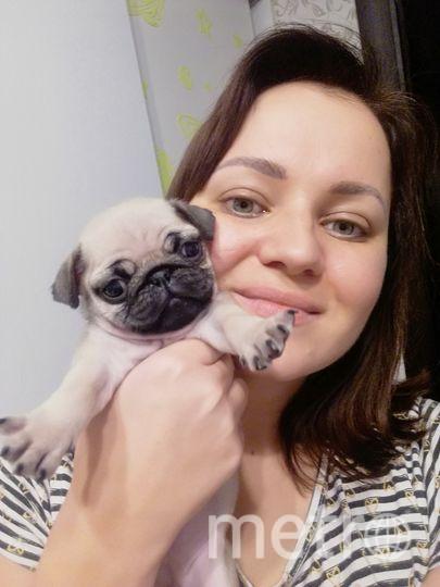 Хозяйка и щенок. Фото Виктория Борисова
